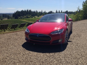 Tesla with panels and vineyard in background